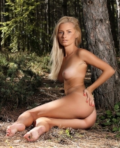 Alba in the Forest